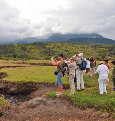 Tanzania Discovery Safari