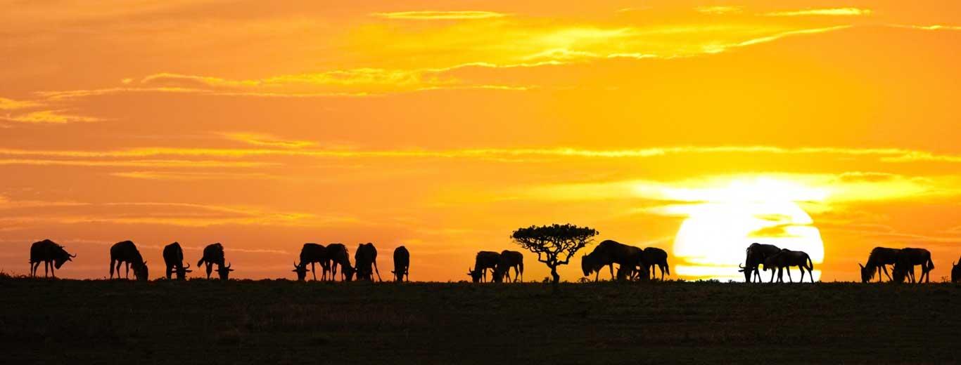 Climate Of Tanzania