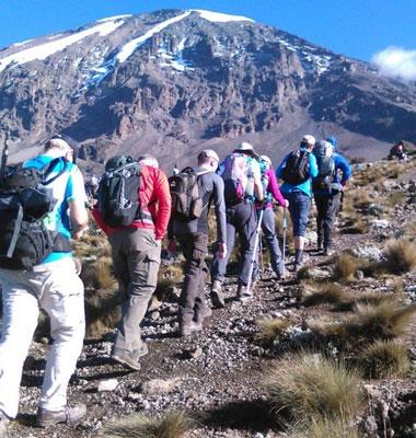 Kilimanjaro Adventure