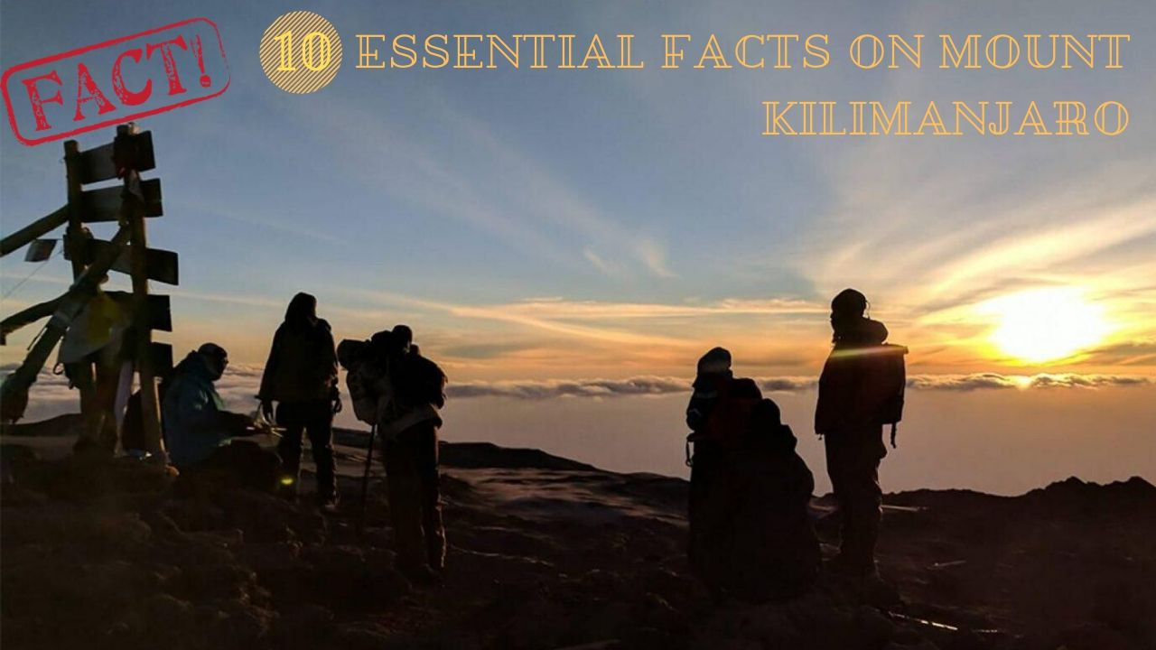 Kilimanjaro Facts: Know Best Facts Before Climbing Mount Kilimanjaro