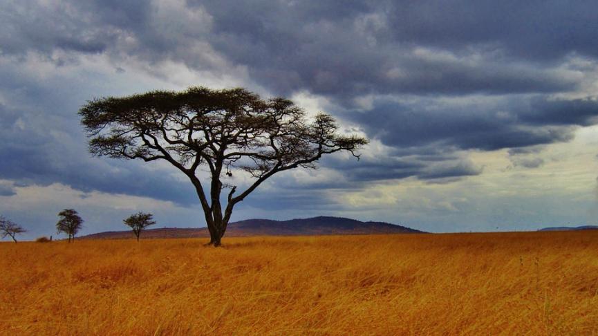 Planning for time for Tanzania Safari