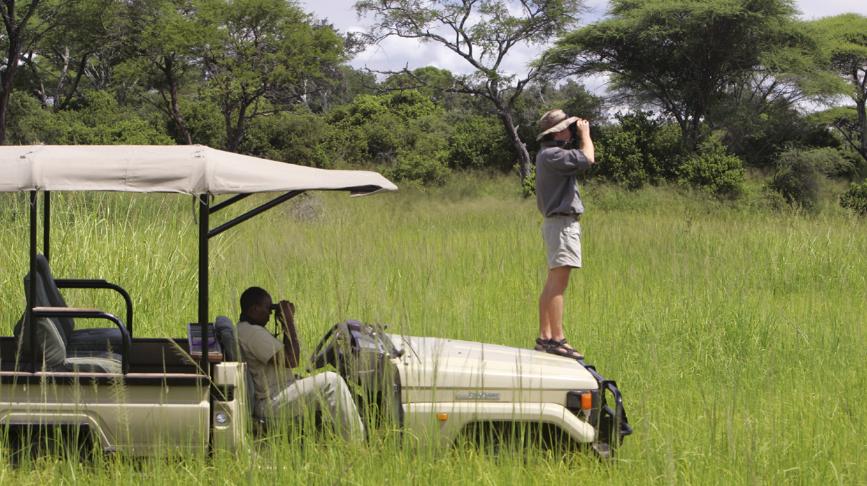 Vahicle planning for Tanzania Safari