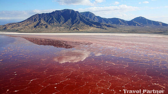 The red Lake Alkaline In Nature