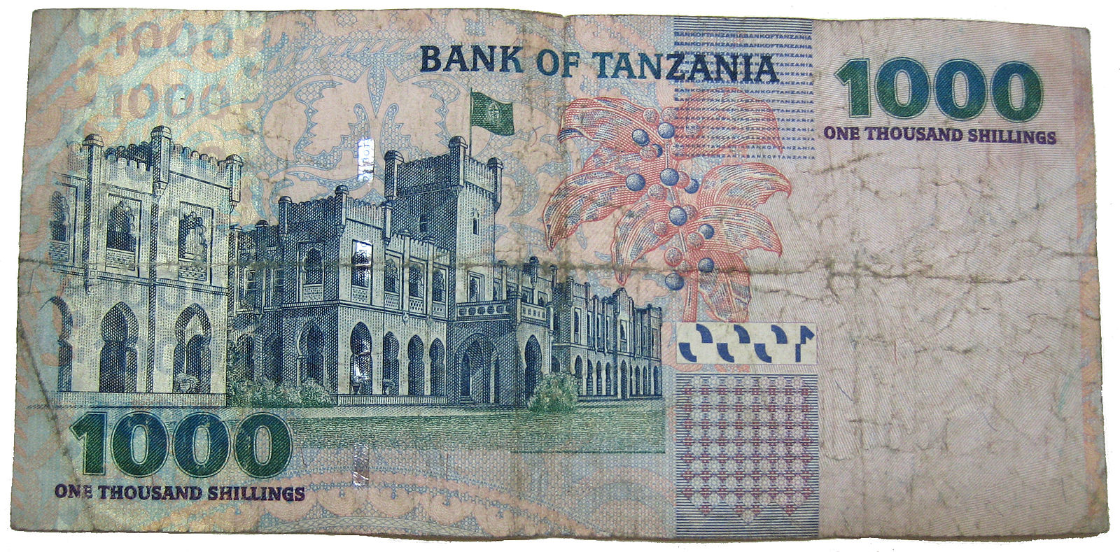 Tanzania currency